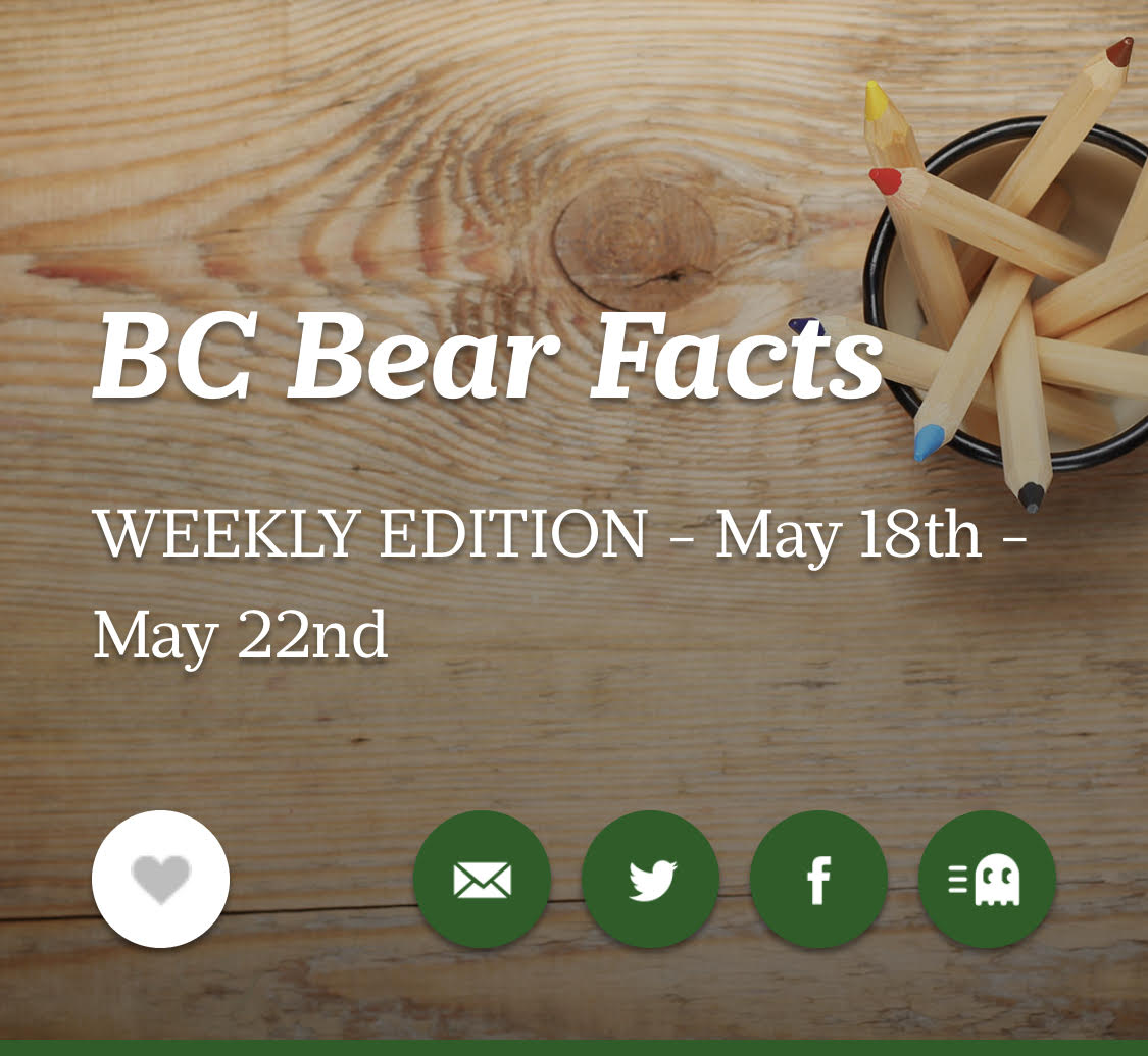 BC Bear Facts - Weekly Edition May 18th-22nd